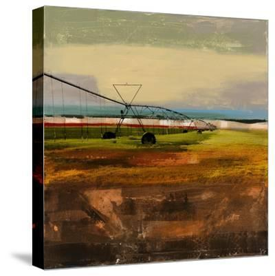 Texas Agriculture-Sisa Jasper-Stretched Canvas Print