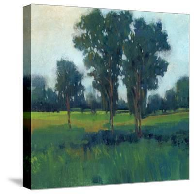 Afternoon Sun II--Stretched Canvas Print