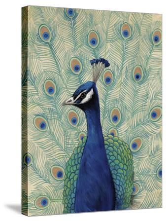 Blue Peacock II--Stretched Canvas Print