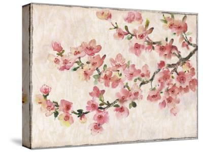 Cherry Blossom Composition I--Stretched Canvas Print