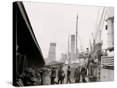 Unloading a Banana Steamer, Mobile, Ala.--Stretched Canvas Print