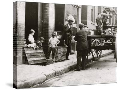 Boston Street Kids-Lewis Wickes Hine-Stretched Canvas Print