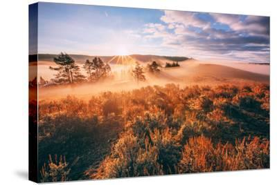 Sudden Fog and Light Beams, Morning at Yellowstone National Park-Vincent James-Stretched Canvas Print