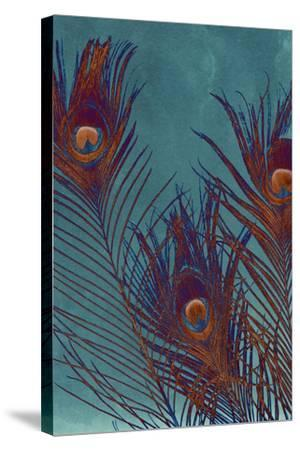 Luxe Plumes I-Jason Johnson-Stretched Canvas Print