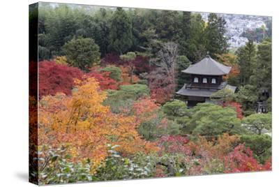 The Silver Pavilion and Gardens in Autumn-Stuart Black-Stretched Canvas Print