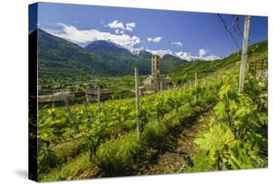 The Church of Bianzone Seen from the Green Vineyards of Valtellina, Lombardy, Italy, Europe-Roberto Moiola-Stretched Canvas Print