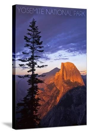 Yosemite National Park, California - Half Dome and Pine Tree-Lantern Press-Stretched Canvas Print