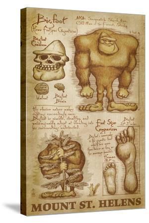 Mount St. Helens, Washington - Bigfoot da Vinci-Lantern Press-Stretched Canvas Print