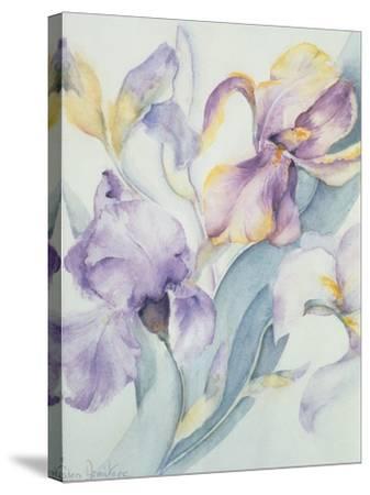 Iris Mixed, Ola Kale and Mary Todd-Karen Armitage-Stretched Canvas Print