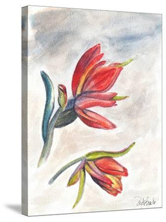Indian Paint Brush-Jennifer Redstreake Geary-Stretched Canvas Print