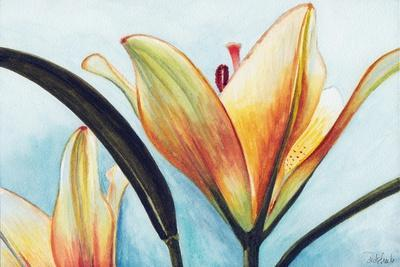 Lilies-Jennifer Redstreake Geary-Stretched Canvas Print