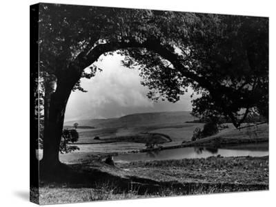 Craigallian Loch 1956-Daily Record-Stretched Canvas Print