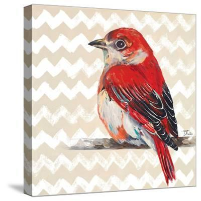 Cheveron Baby Red Bird II-Patricia Pinto-Stretched Canvas Print