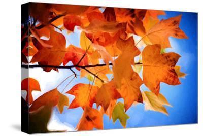 Celebrate Autumn-Philippe Sainte-Laudy-Stretched Canvas Print