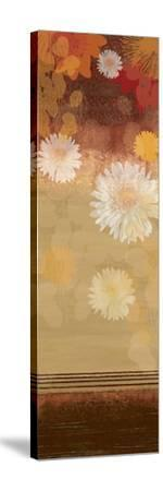 Floating Florals II-Andrew Michaels-Stretched Canvas Print