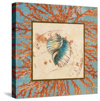 Coral Medley Shell I-Lanie Loreth-Stretched Canvas Print