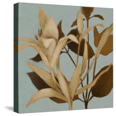 Foliage on Teal II-Lanie Loreth-Stretched Canvas Print