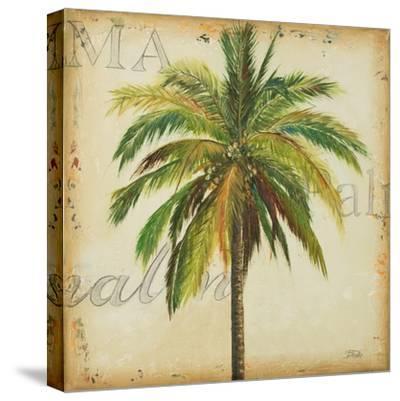 La Palma I-Patricia Pinto-Stretched Canvas Print