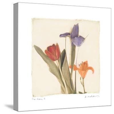 Tre Fiori I-Amy Melious-Stretched Canvas Print