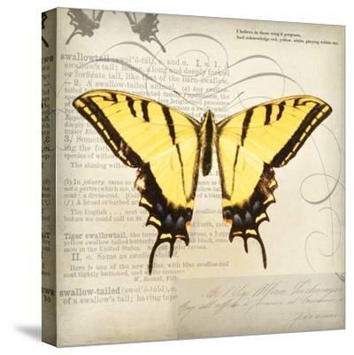 Butterflies Script V-Amy Melious-Stretched Canvas Print