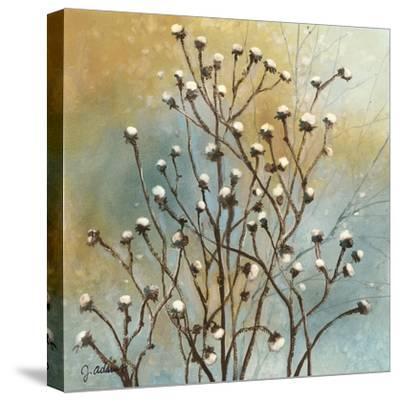 Fall Meadow IV-J^ Adams-Stretched Canvas Print