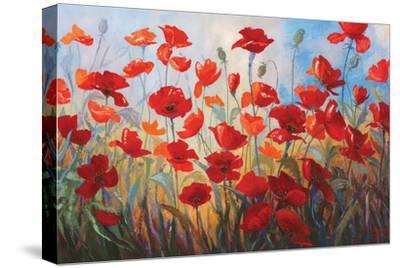 Poppies at Dusk III-Stanislav Sidorov-Stretched Canvas Print