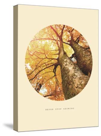 Inspirational Circle Design - Autumn Trees: Never Stop Growing-Subbotina Anna-Stretched Canvas Print