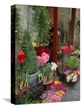 Florist in Ile St. Louis, Paris, France-Lisa S^ Engelbrecht-Stretched Canvas Print