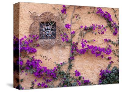Ornamental Window, San Miguel De Allende, Mexico-Alice Garland-Stretched Canvas Print