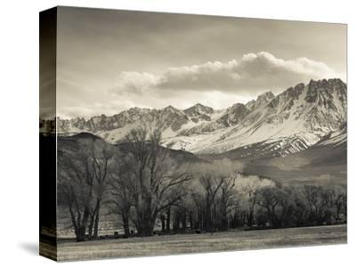 USA, California, Eastern Sierra Nevada Area, Bishop, Landscape of the Pleasant Valey-Walter Bibikow-Stretched Canvas Print