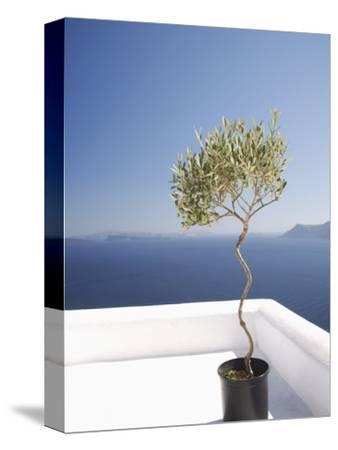 Santorini, Cyclades, Greek Islands, Greece, Europe-Angelo Cavalli-Stretched Canvas Print
