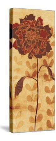 Sarah's Garden II-Sarah Adams-Stretched Canvas Print