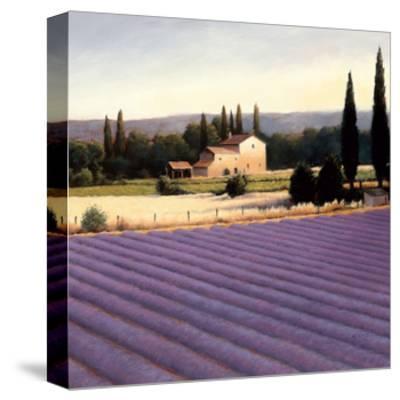Lavender Fields II Crop-James Wiens-Stretched Canvas Print
