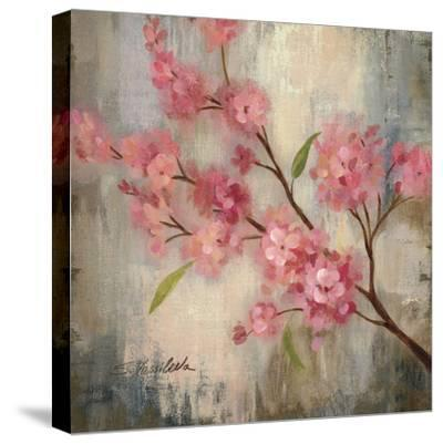 Cherry Blossom II--Stretched Canvas Print
