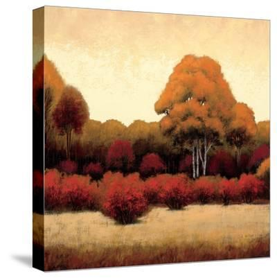 Autumn Forest I-James Wiens-Stretched Canvas Print