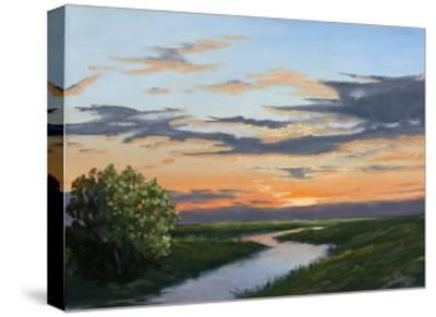 Evening Hue of Orange-Julie Peterson-Stretched Canvas Print