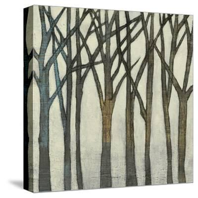 Birch Line II-Jennifer Goldberger-Stretched Canvas Print