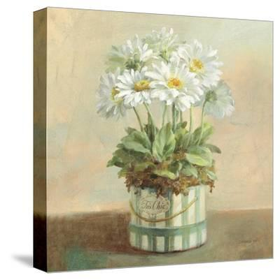 Tres Chic Daisies-Danhui Nai-Stretched Canvas Print