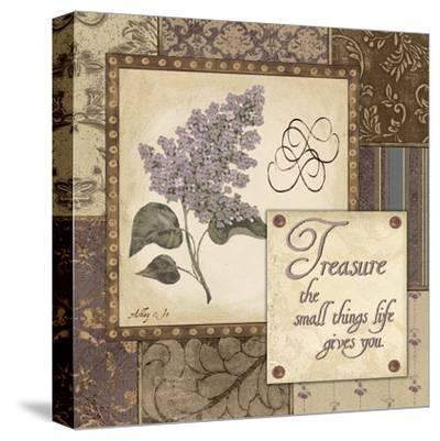 Treasure-Jo Moulton-Stretched Canvas Print