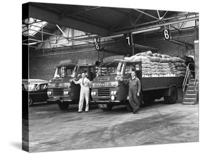 Commer Lorries at Spillers Foods Ltd, Gainsborough, Lincolnshire, 1962-Michael Walters-Stretched Canvas Print