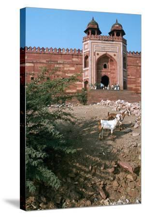 Buland Darwaza, Fatehpur Sikri, Agra, Uttar Pradesh, India-Vivienne Sharp-Stretched Canvas Print