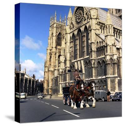 Tetley Shire Horses Outside York Minster, North Yorkshire, 1969-Michael Walters-Stretched Canvas Print