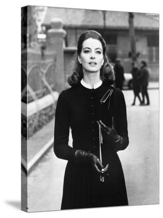 What's New Pussycat?. Capucine--Stretched Canvas Print