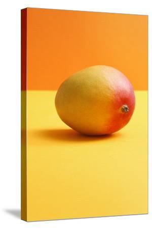Mango on Coloured Background--Stretched Canvas Print