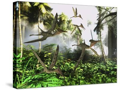 A Flock of Pterodactylus Reptiles Fly over the Jungle Searching for their Next Meal-Stocktrek Images-Stretched Canvas Print