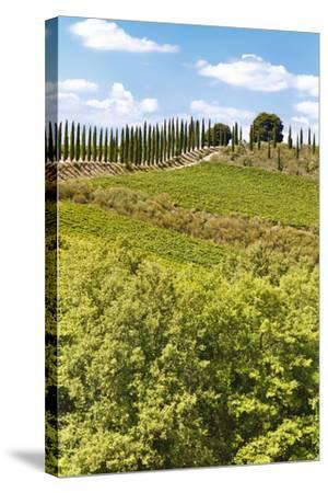 Montalcino-lachris77-Stretched Canvas Print
