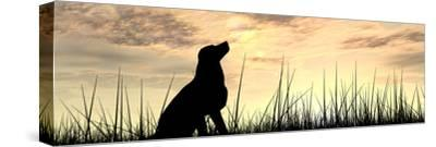 Concept or Conceptual Young Beautiful Black Cute Dog Silhouette in Grass or Meadow over a Sky at Su-bestdesign36-Stretched Canvas Print