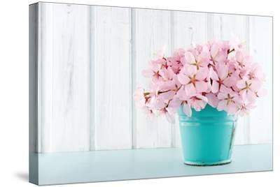 Cherry Blossom Flower Bouquet on Wooden Background-Anna-Mari West-Stretched Canvas Print