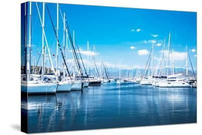 Sailboat Harbor, Many Beautiful Moored Sail Yachts in the Sea Port, Modern Water Transport, Summert-Anna Omelchenko-Stretched Canvas Print