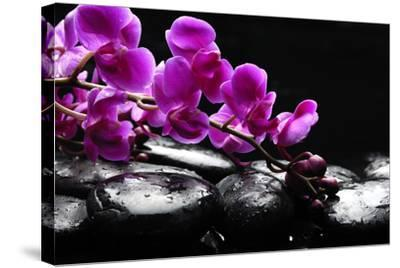 Zen Stone and Pink Orchid with Reflection-crystalfoto-Stretched Canvas Print